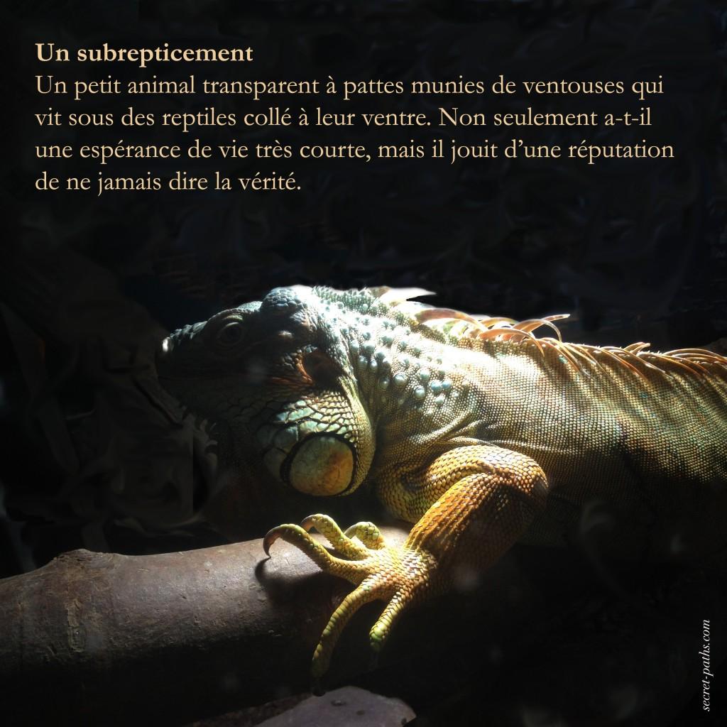 Subrepticement